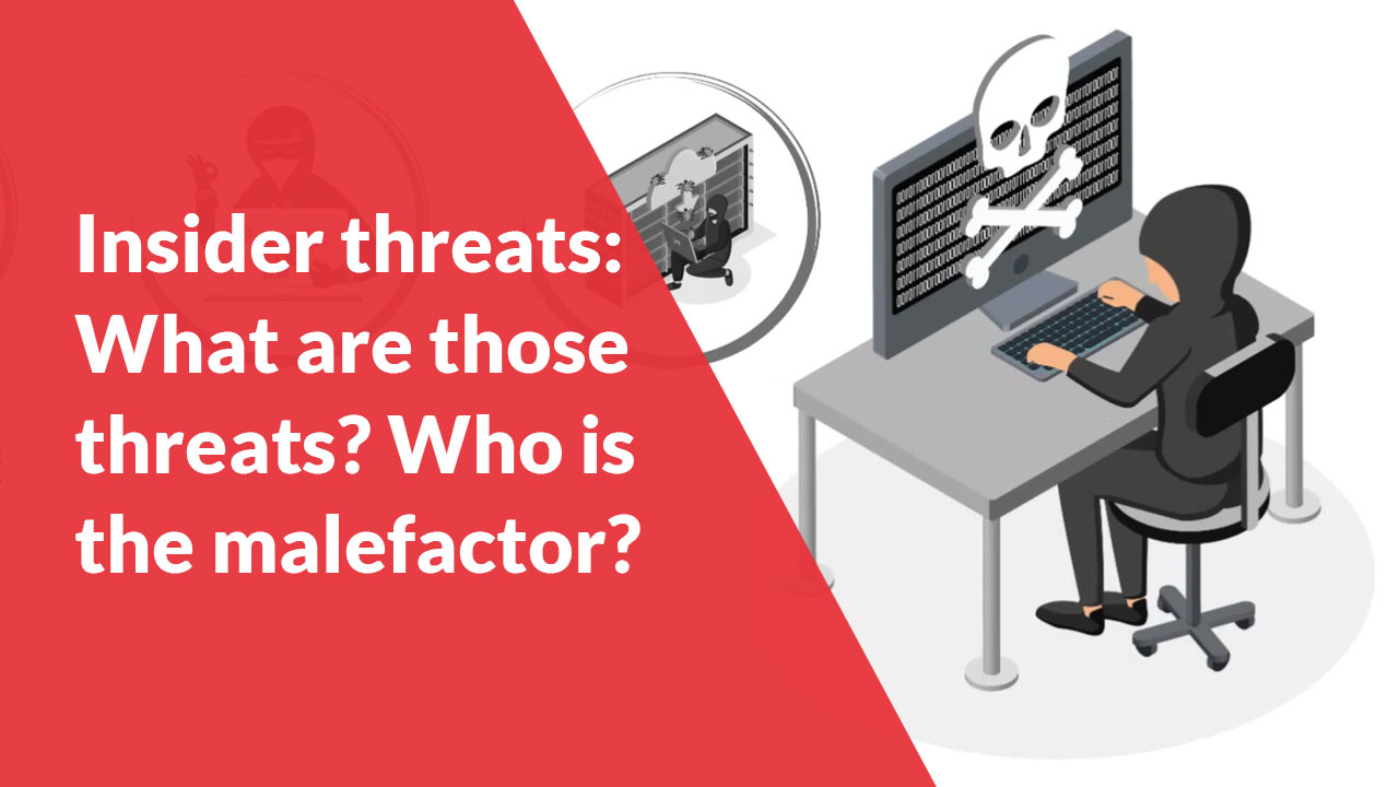 Insider threats: What are those threats? Who is the malefactor?